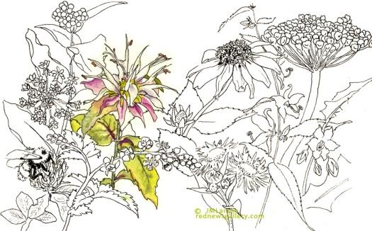 ATwildflowers_mint